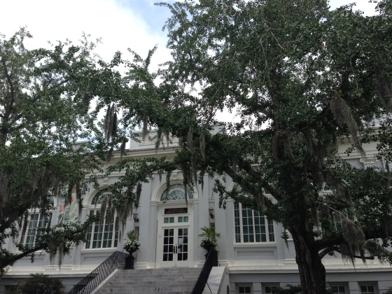 Beautiful Spanish moss outside the Charleston library